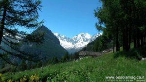 Alpe La Balma - Val Divedro