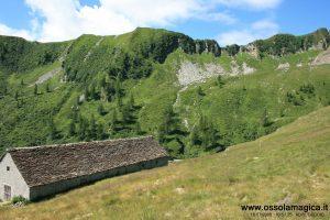 Alpe Geccio