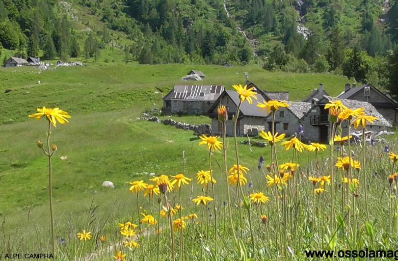 Alpe Campra, val Vigezzo