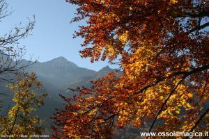 Coimo - Val Vigezzo