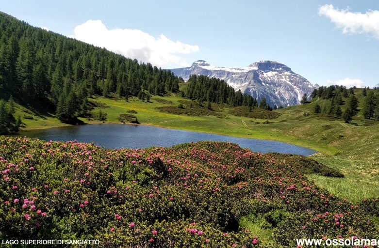 Da Devero ai laghi di Sangiatto e all'alpe Poiala (luglio 2019)