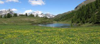 Traversata Devero-Laghi di Sangiatto-Alpe Della Valle (luglio 2021)