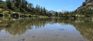 Lago di Agro e Alpe Monscera (agosto 2020)